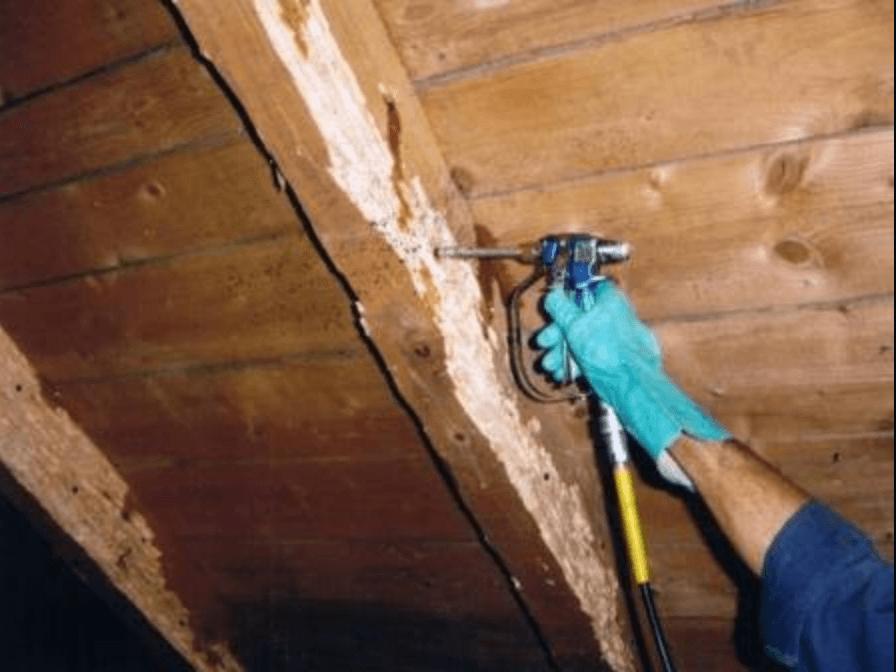 traitement bois charpente gsft